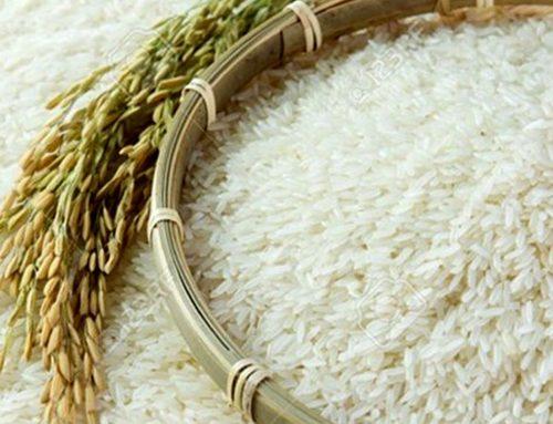 کاهش ۶۹ درصدی ترخیص برنج